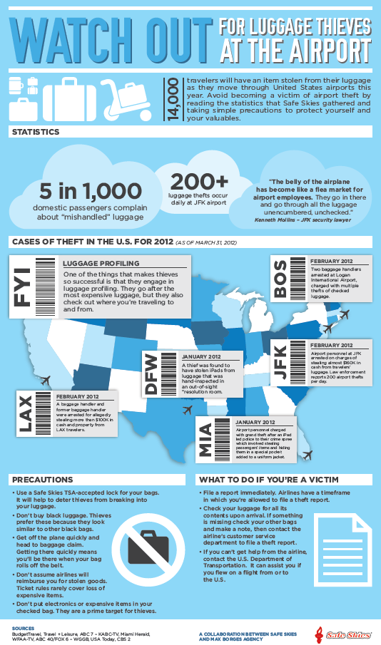 Safe-Skies-Infographic